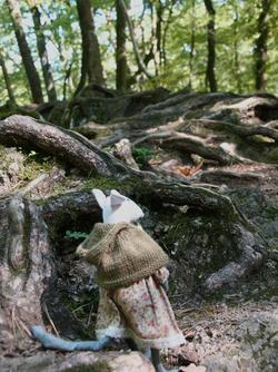 La forêt selon Mélisse