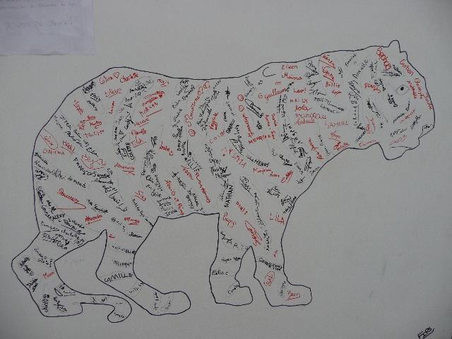 Des tigres dans la ville!