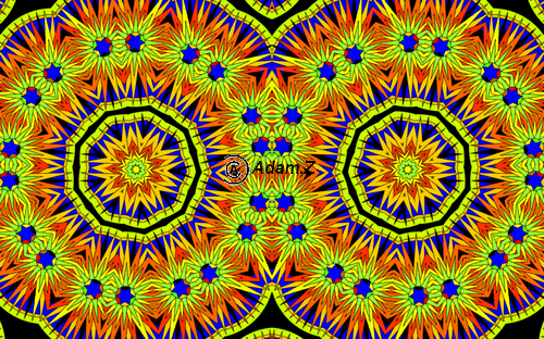 12 Adam créations