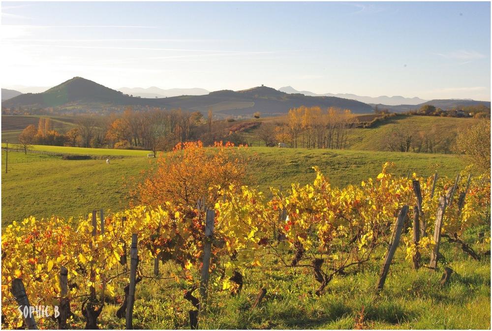Un long passé viticole .