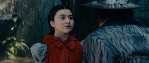 Critique de film : Into the woods, le film.