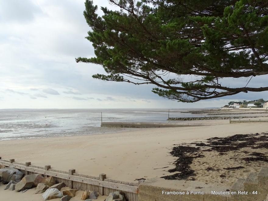 Moutiers en retz - Balade littoral