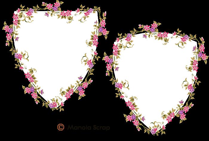 Cadres fleurs page 2