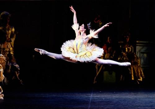 04/11/2011 - Luciana Paris