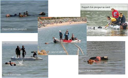 Sauvetage à l'eau avec des chiens