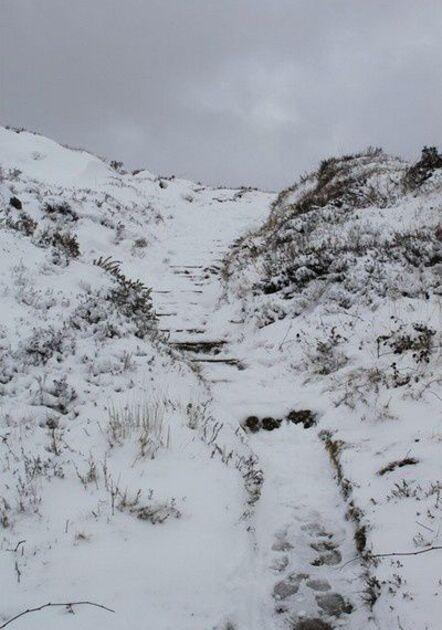 Neige en Monts d'Arrée 084