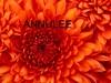 21/10/17 : VENTE DE FLEURS  ANNULEE