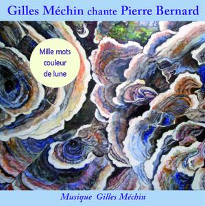 Gilles Méchin (CD)