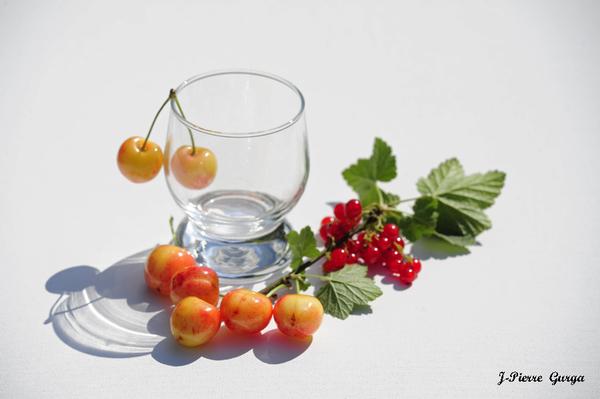 """""""Florilège de fruits et de pétales"""",  les dernières superbes photos de la série, par Jean-Pierre Gurga"""