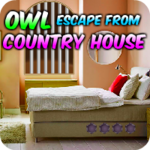 Owl Escape From Country House