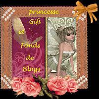 princesse5.jpg