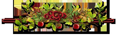 Barres de séparation fleuries png