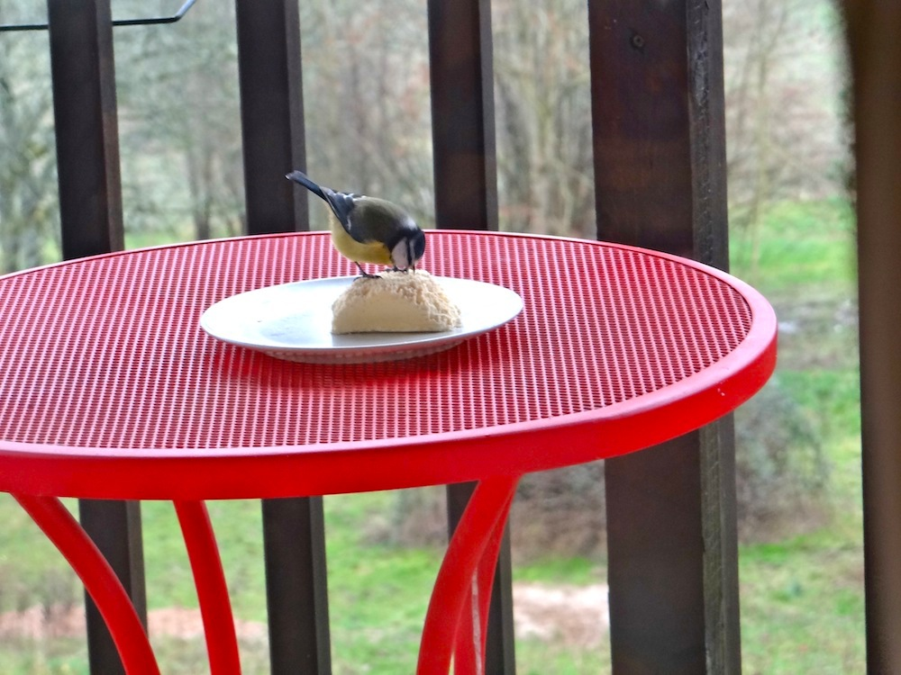 mes visiteurs habituels....ils ont une bonne table et ils le savent