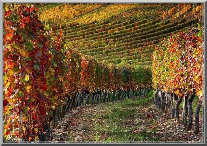 La Bourgogne en automne