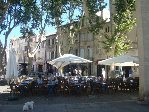Flânnerie dans Avignon!