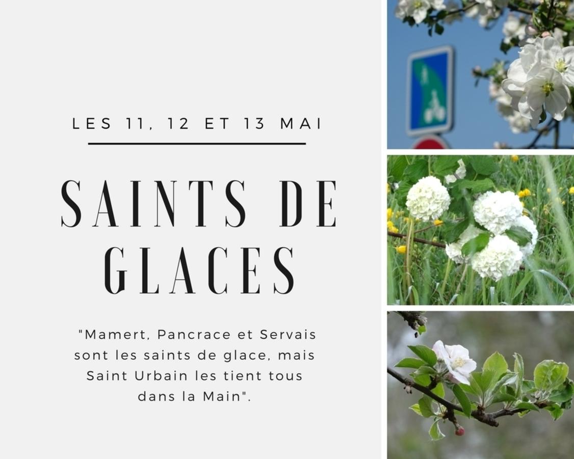 RECETTE:  Tarte à la confiture         D    10/05/2018