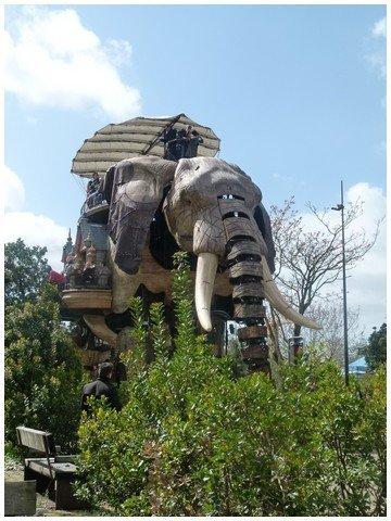 éléphant (2)