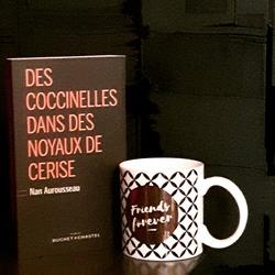 Des coccinelles dans des noyaux de cerise de Nan Aurousseau