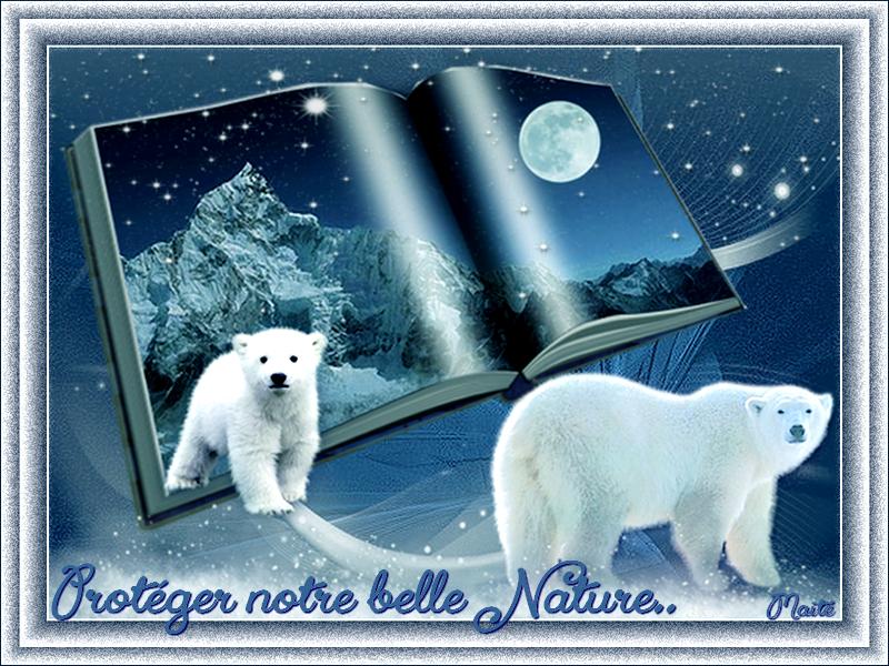 *Protéger  notre belle Nature...