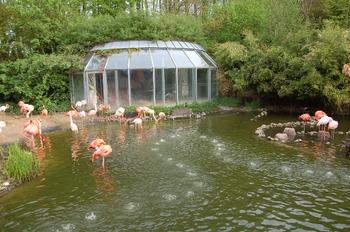 Zoo Osnabruck d50 2012 003