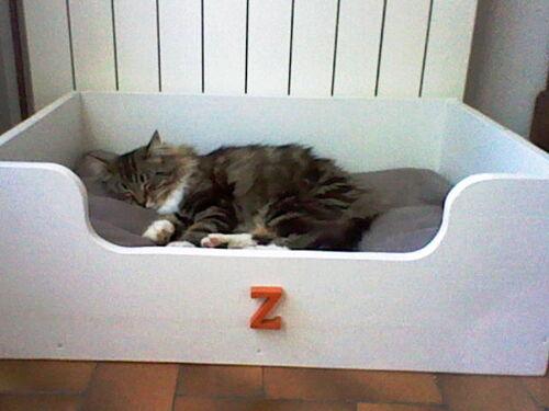 Jaya qui dort dans le panier de Zouk