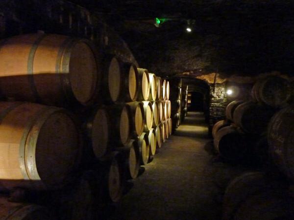 Banyuls - Cellier des Templiers la cave souterraine