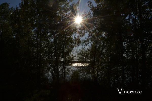 Soleil automne originale