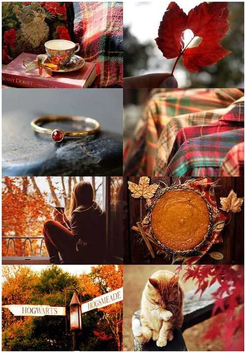 Collages automne