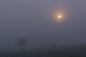 Deuxième pleine Lune de novembre