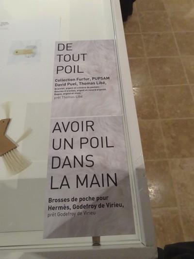 """Le Festival de Curiosités de Montbard 2012 : """"Le Sens du Poil ?""""..."""