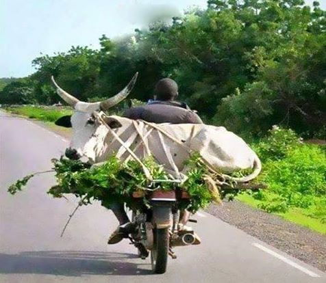 l'ingéniosité Africaine