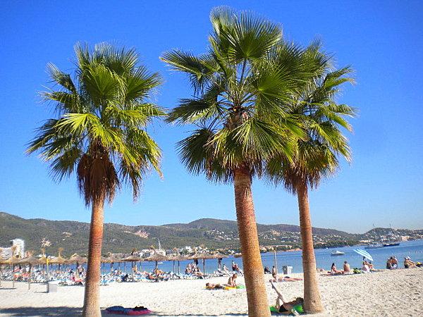 Îslas Baleares Mallorca 023