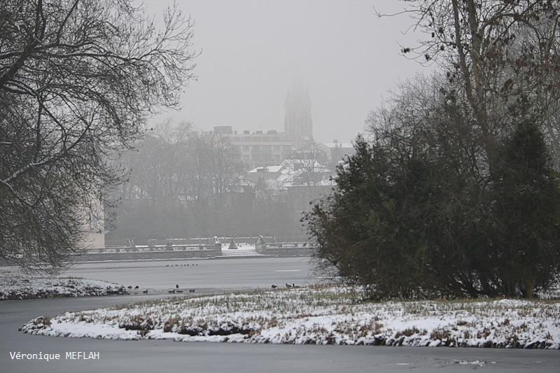Rambouillet sous la neige (22 janvier 2019) (suite)