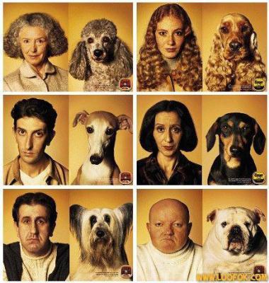La ressemblance homme-chien - MWA