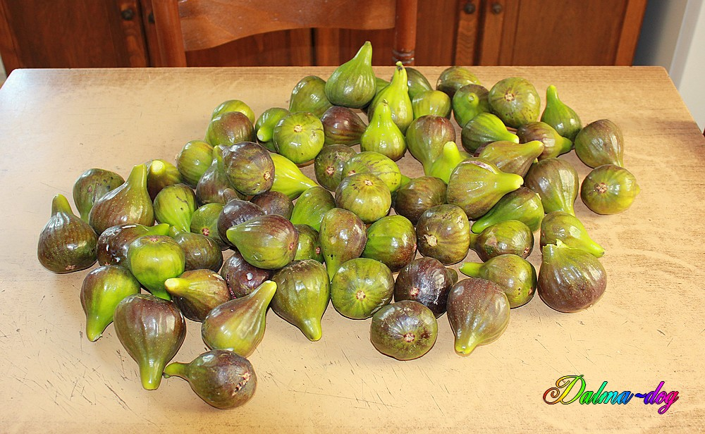figues!!!