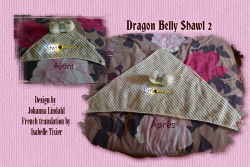 CAL Dragon Belly Shawl 2
