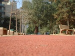 La piste de course