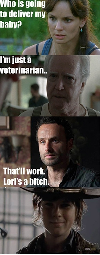 The Walking Dead memes 25