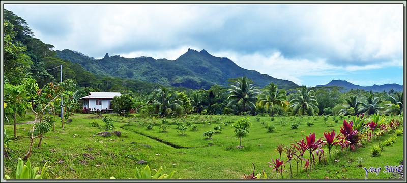 Côté montagne : Panorama vu de la baie Teto'oroa - Raiatea - Polynésie française