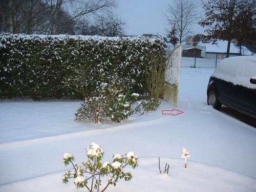 Des pas dans la neige - 2