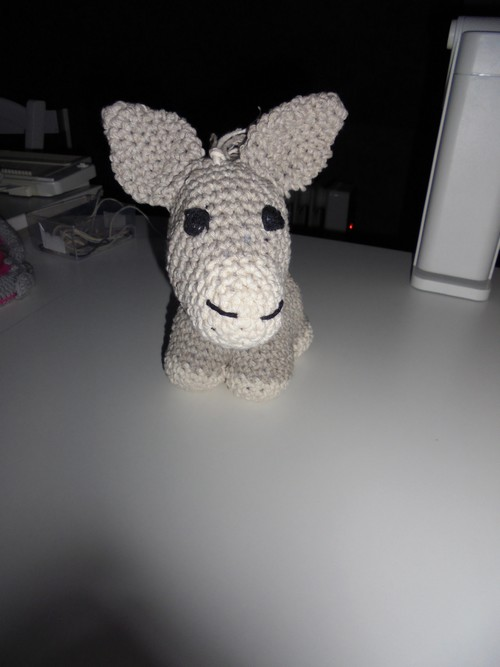 J'ai fait l'âne !