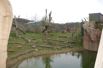Zoo Osnabruck d50 2012 068