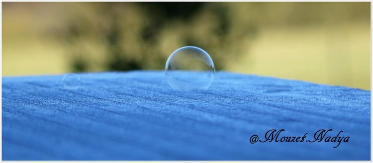Les bulles de savon givrées