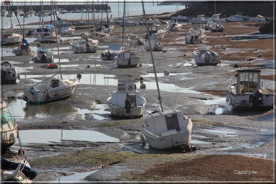 Pornic - Sainte-Marie, journées du patrimoine : les pêcheries et Cie