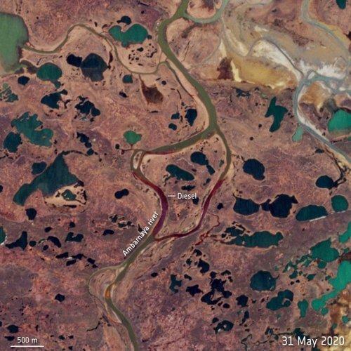 Désastre écologique en Arctique: les autorités russes ont réagi trop tard