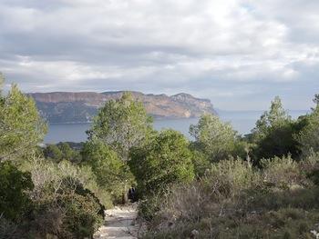 Le GR et  au fond les falaises, du Cap Canaille au sémaphore de La Ciotat
