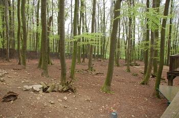 Zoo Osnabruck d50 2012 226