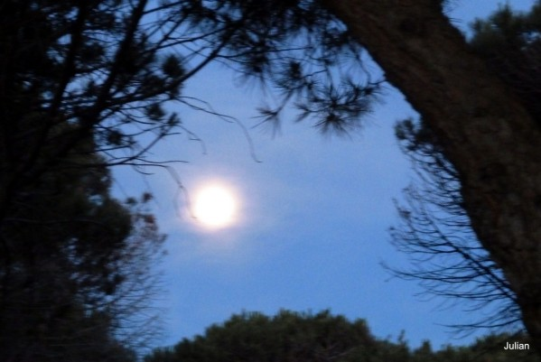Q02---La-lune.JPG