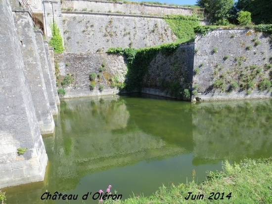 Chateau d'Oléron (14)