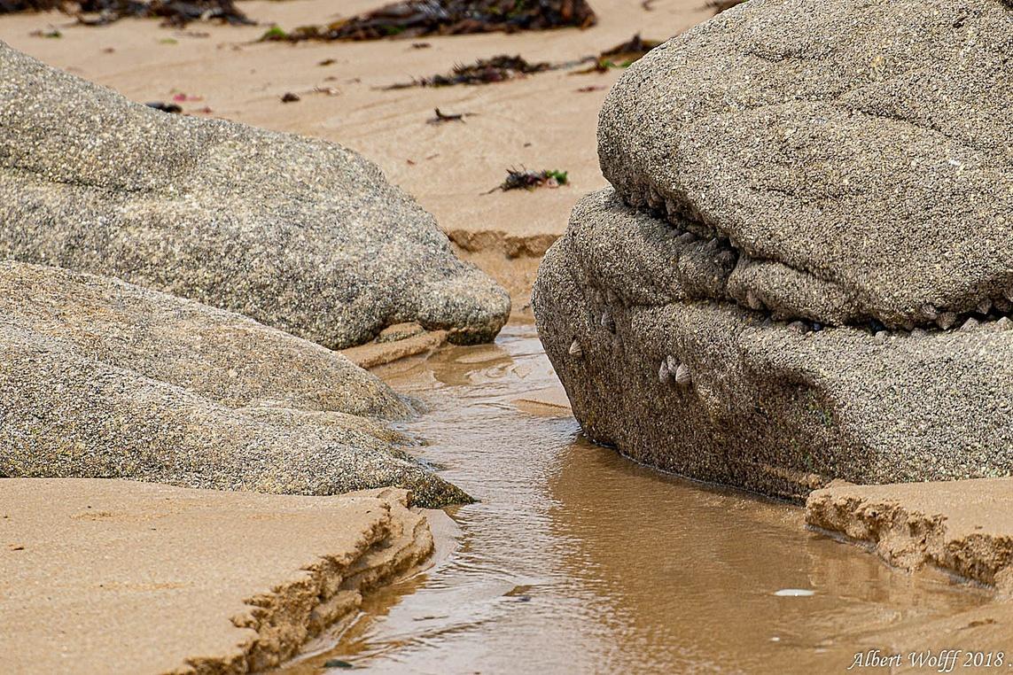 Sur le sable.